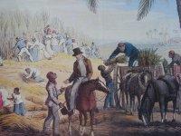 http://jm.sutour.pagesperso-orange.fr/visite%20enmartinique/histoire/esclavage/esclavage%20vie07.jpg
